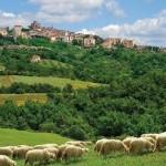 Accordo Pac, ora agricoltori toscani più uguali agli altri