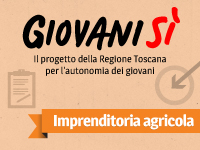 Giovanisì: Imprenditoria agricola