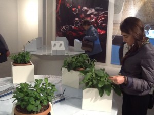 expo stand toscana