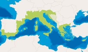 Med regioni aderenti