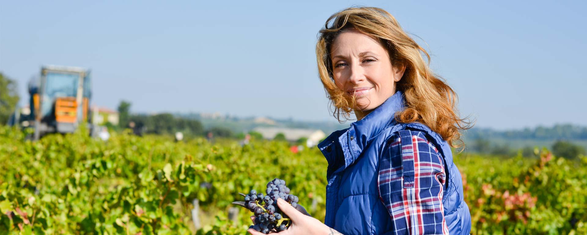 Bando per investimenti nelle aziende agricole: la graduatoria